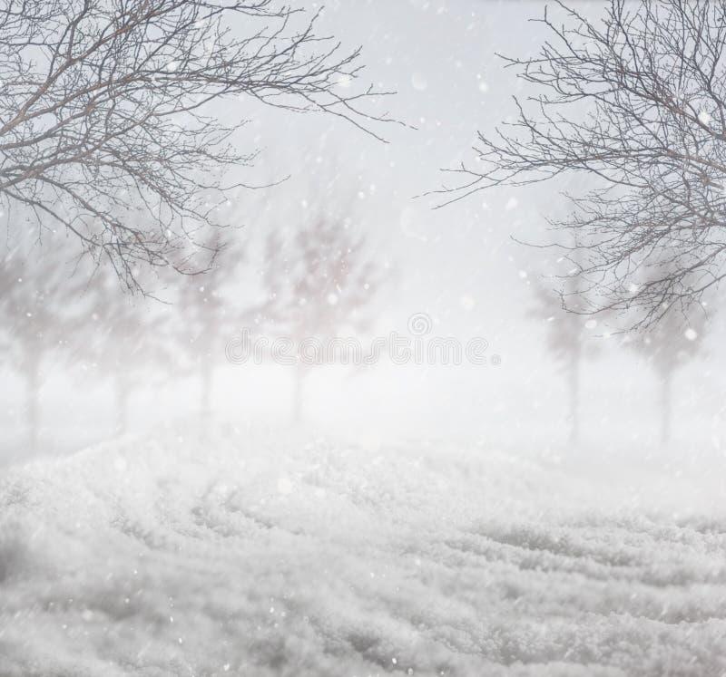 Hintergrund des verschneiten Winters lizenzfreie stockfotos