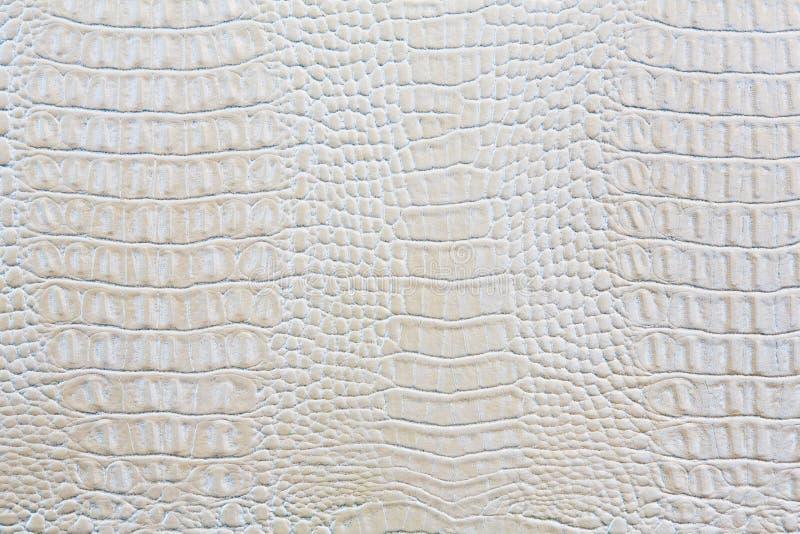 Hintergrund des weißen Leders der Krokodilhaut lizenzfreie stockfotografie