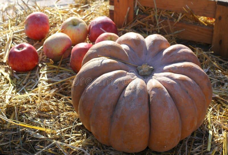 Hintergrund für Danksagungs-Tag mit roten Äpfeln und Kürbis auf Herbst heuen Hintergrund stockbild