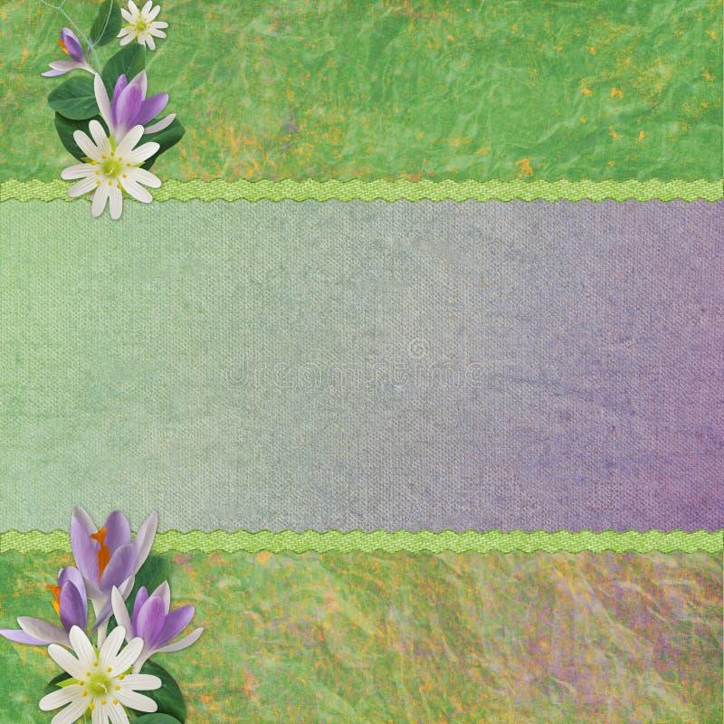 Hintergrund für Glückwunschkarte lizenzfreie abbildung