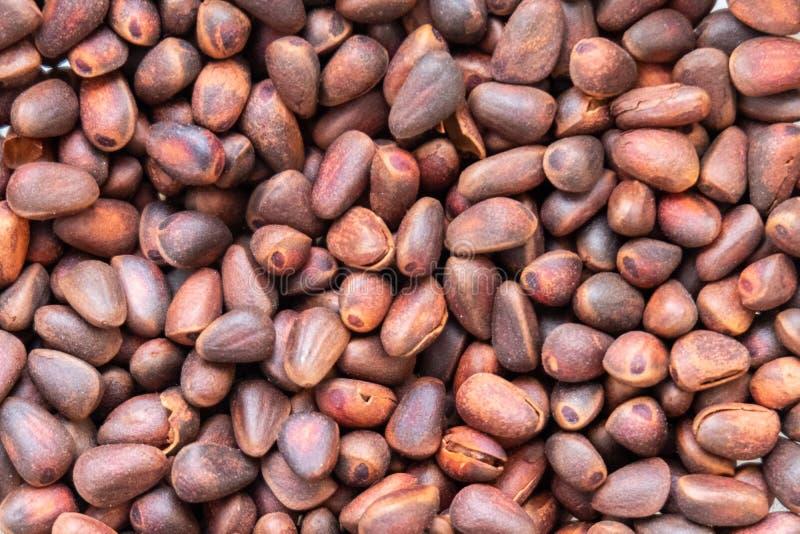 Hintergrund gebratene Kiefernnüsse Hintergrund gebratene Kiefernnüsse Konzept der gesunden Ernährung, Vegetarismus Natürliche Bes lizenzfreies stockfoto