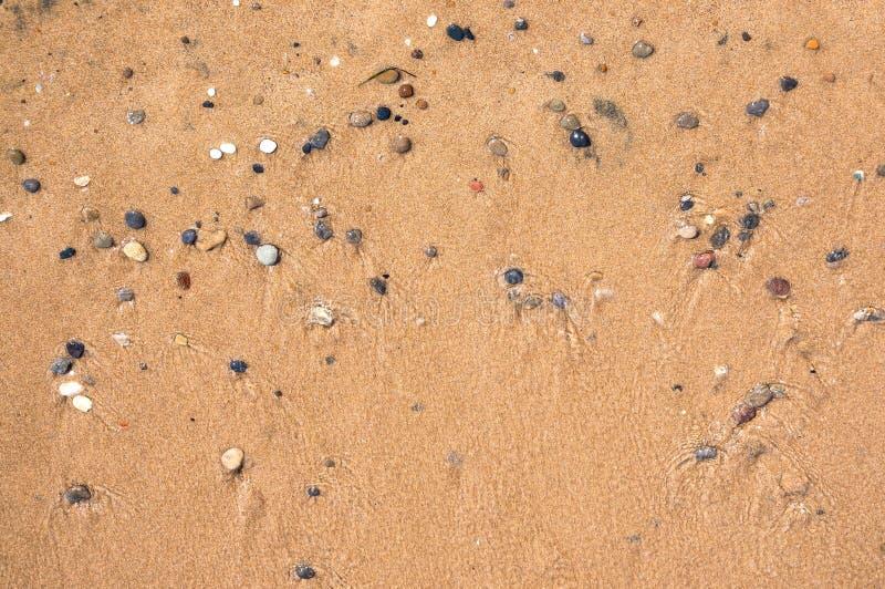 Hintergrund gemacht vom nassen Sand und von den Kieseln stockfotos