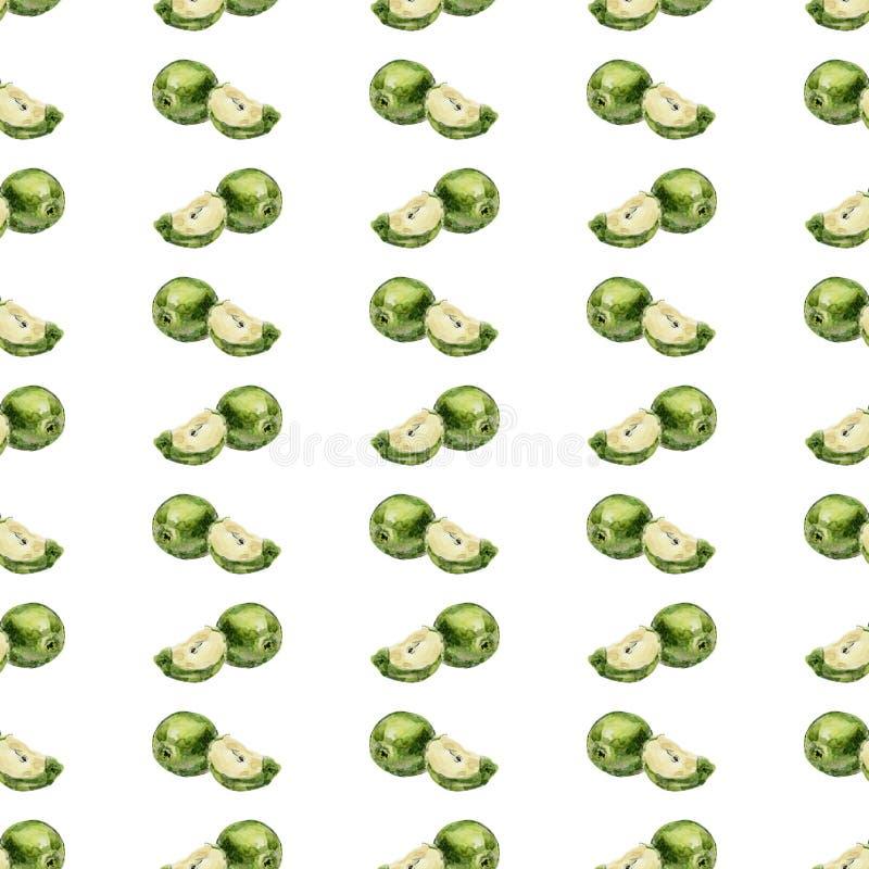 Hintergrund-Grünäpfel des Aquarells nahtlose und Scheiben von Äpfeln auf einem weißen Hintergrund stockbild