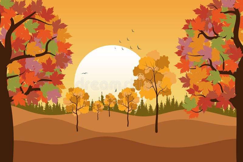 Hintergrund im Herbst, Landschaft. Ahornbäume mit bunten Blättern. Sonnenuntergang. abend. V?gel fliegen weg stock abbildung