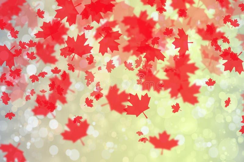 Hintergrund mit Ahornholzblättern lizenzfreie abbildung