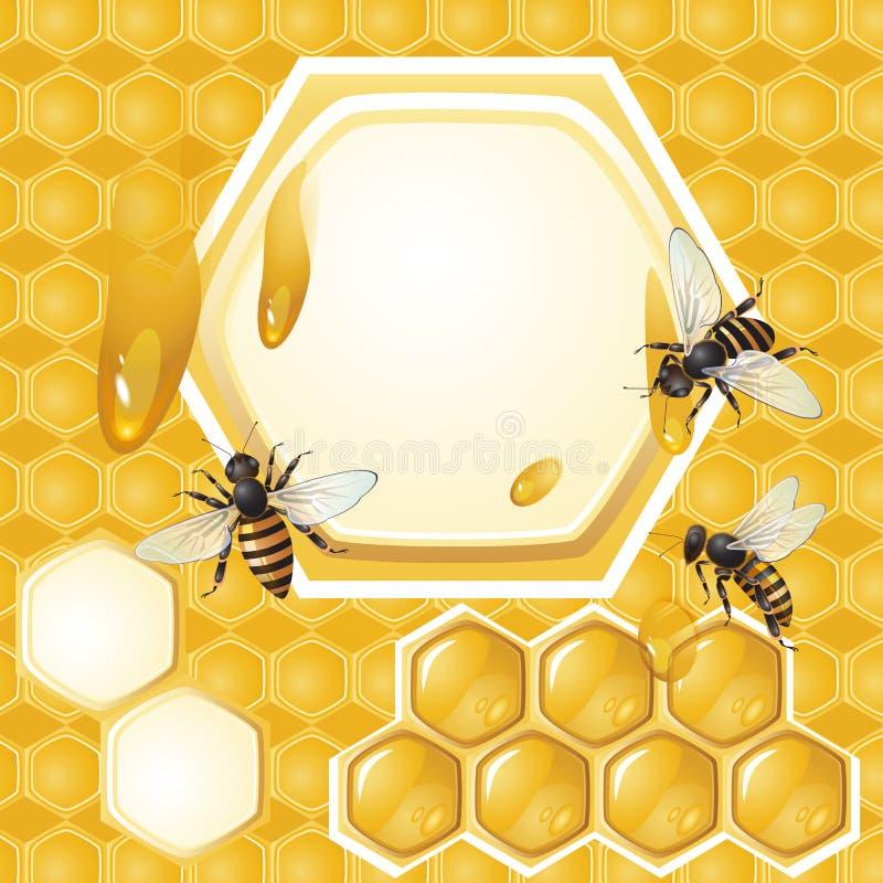 Download Hintergrund Mit Bienen Und Bienenwabe Vektor Abbildung - Illustration von leerzeichen, tropfenfänger: 26370981