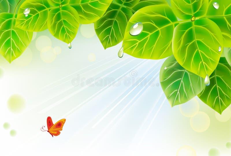 Hintergrund mit Blättern vektor abbildung