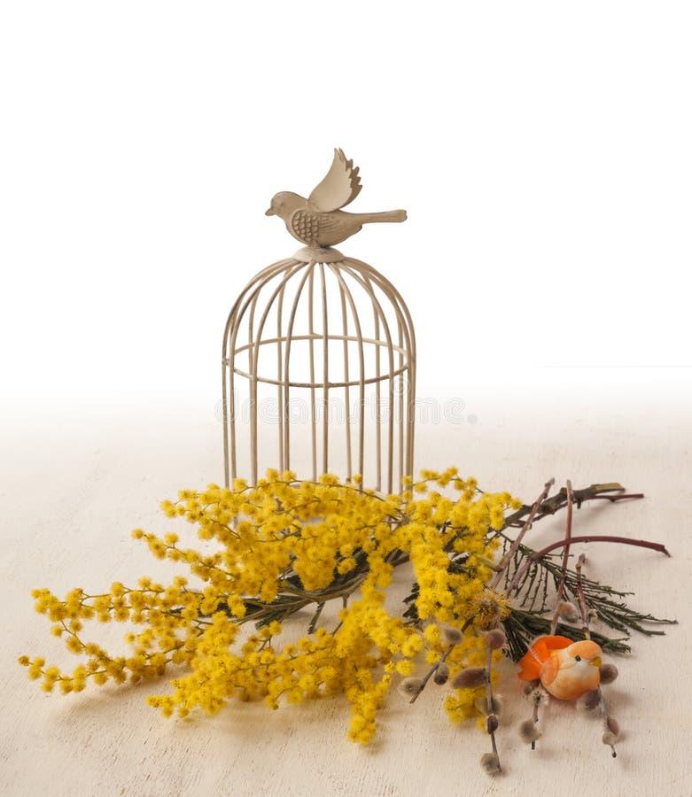 Hintergrund mit dekorativem Käfig und Mimose der Weinlese lizenzfreie stockbilder