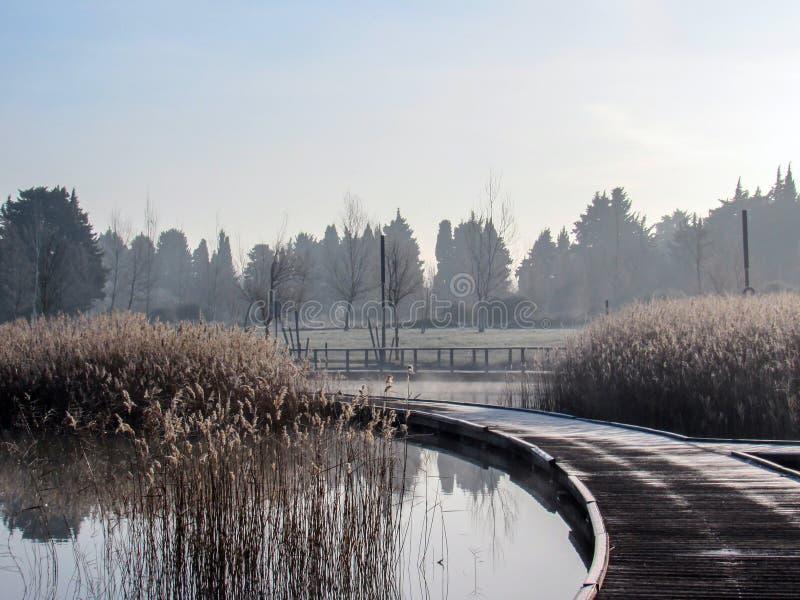 Hintergrund mit hölzernem Weggehweg am Seeufer auf einem ruhigen ruhigen Wintermorgen Hölzerner Pier Frost-Hoar lizenzfreies stockfoto