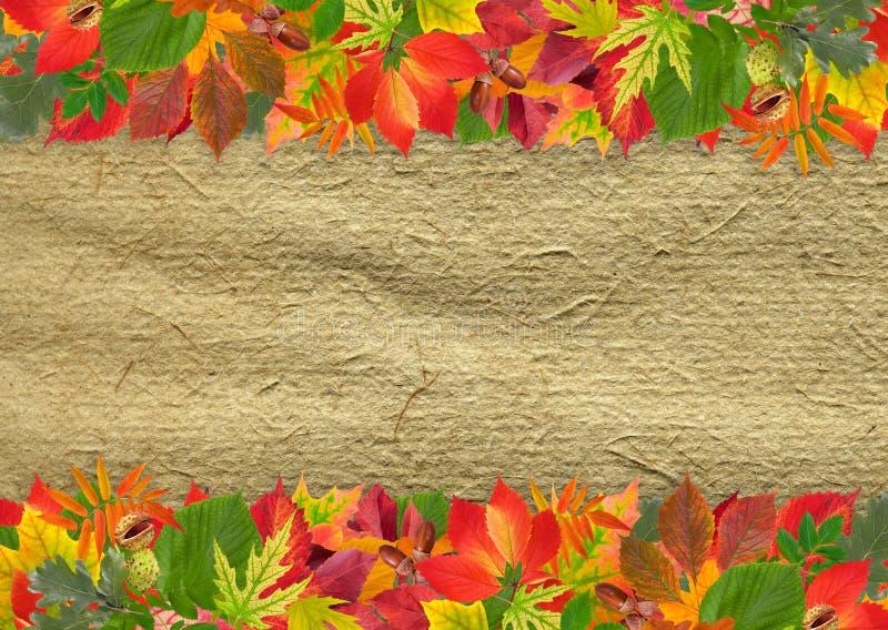 Hintergrund mit Herbstblättern stockbilder