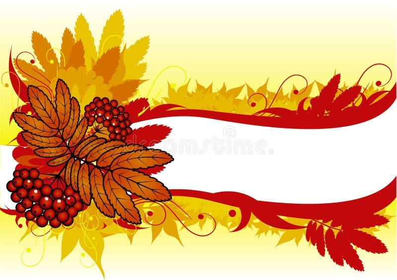 Hintergrund mit rotem ashberry lizenzfreie abbildung
