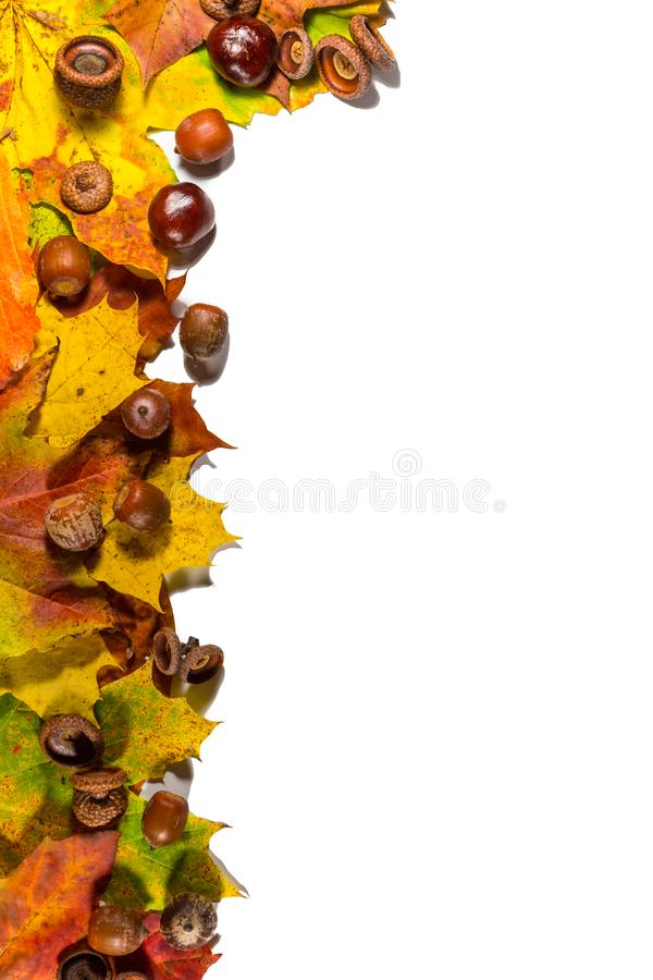 Hintergrund mit roten, orange, braunen und gelben fallenden Herbstlaub, den Kastanien und den Erdnüssen auf weißem Brett stockfotos