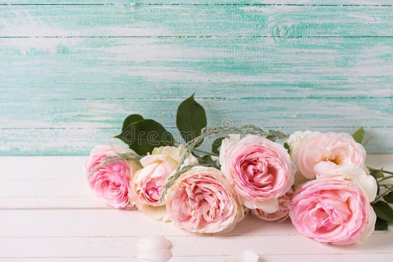 Hintergrund mit süßen rosa Rosen blüht auf dem Weiß gemalt hölzern stockfotografie