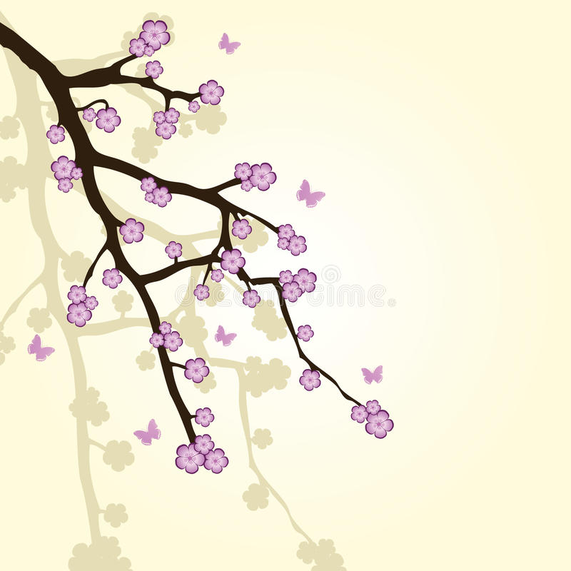 Hintergrund mit Sakura-Zweig vektor abbildung