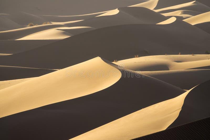 Hintergrund mit sandigen Dünen in der Wüste lizenzfreie stockfotos