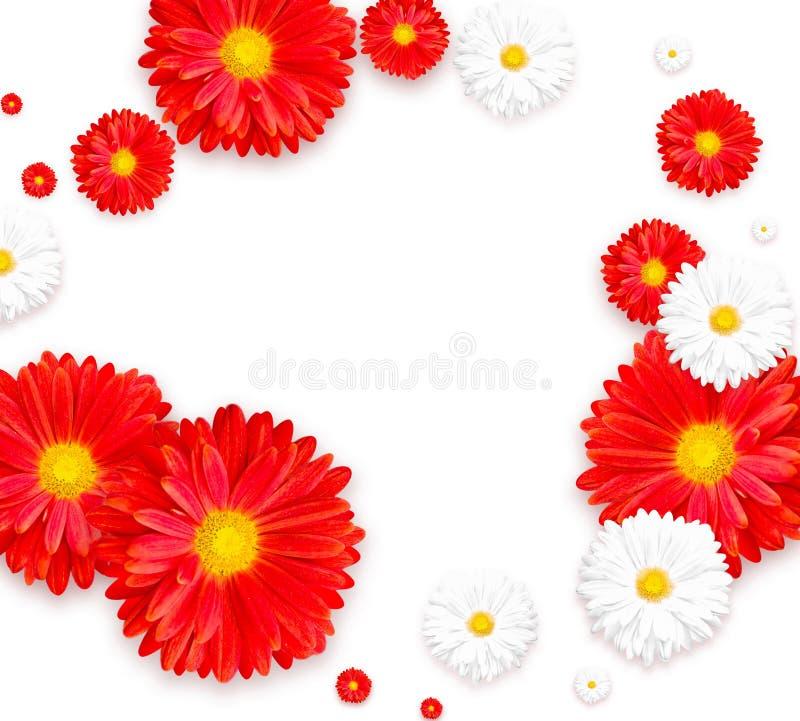 Hintergrund mit schöner bunter Blume Tapezieren Sie Flieger, Einladung, Poster, Broschüre, Belegrabatt lizenzfreie stockfotografie