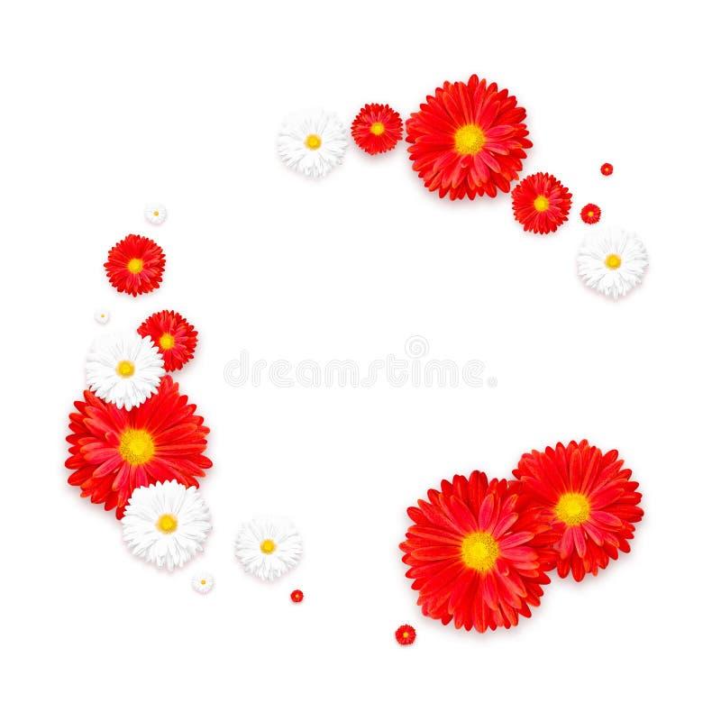 Hintergrund mit schöner bunter Blume Tapezieren Sie Flieger, Einladung, Poster, Broschüre, Belegrabatt lizenzfreie stockfotos