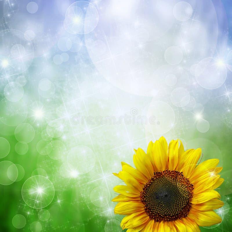Hintergrund mit Sonnenblume vektor abbildung