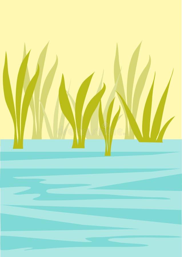 Hintergrund mit Wasser und Schilfen vektor abbildung