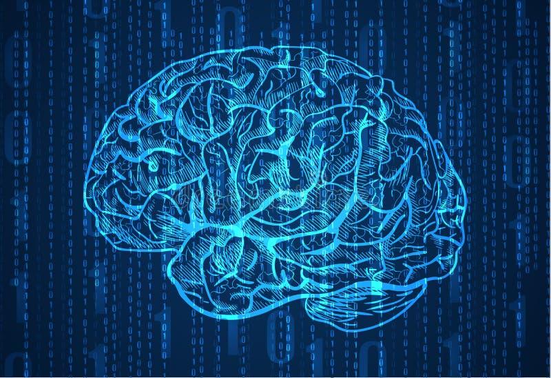 Hintergrund mit Zahlen und Gehirnskizze Abstrakter blauer Hintergrund vektor abbildung