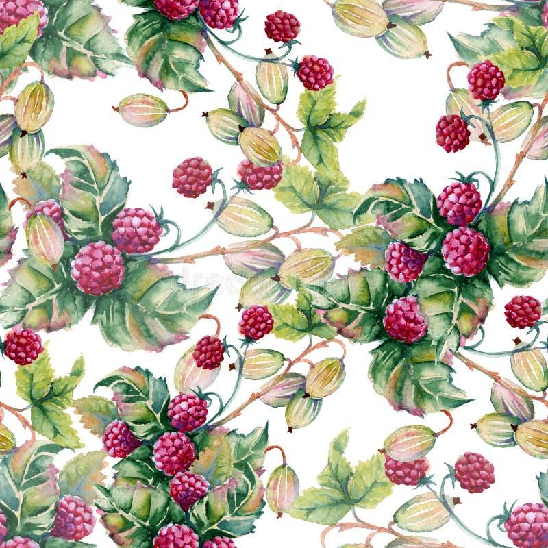 Hintergrund von Beeren von raspberriWatercolor Illustration lizenzfreie abbildung