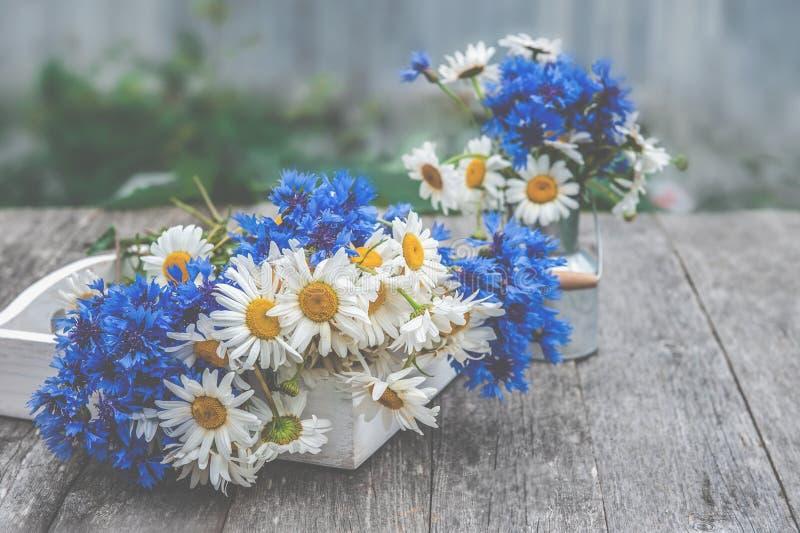 Hintergrund von Blumensträußen von schönen wilden Blumen von Gänseblümchen und von Kornblumen auf dem Hintergrund des alten hölze stockfoto