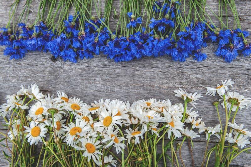 Hintergrund von Blumensträußen von schönen wilden Blumen von Gänseblümchen und von Kornblumen auf dem Hintergrund des alten hölze lizenzfreie stockbilder