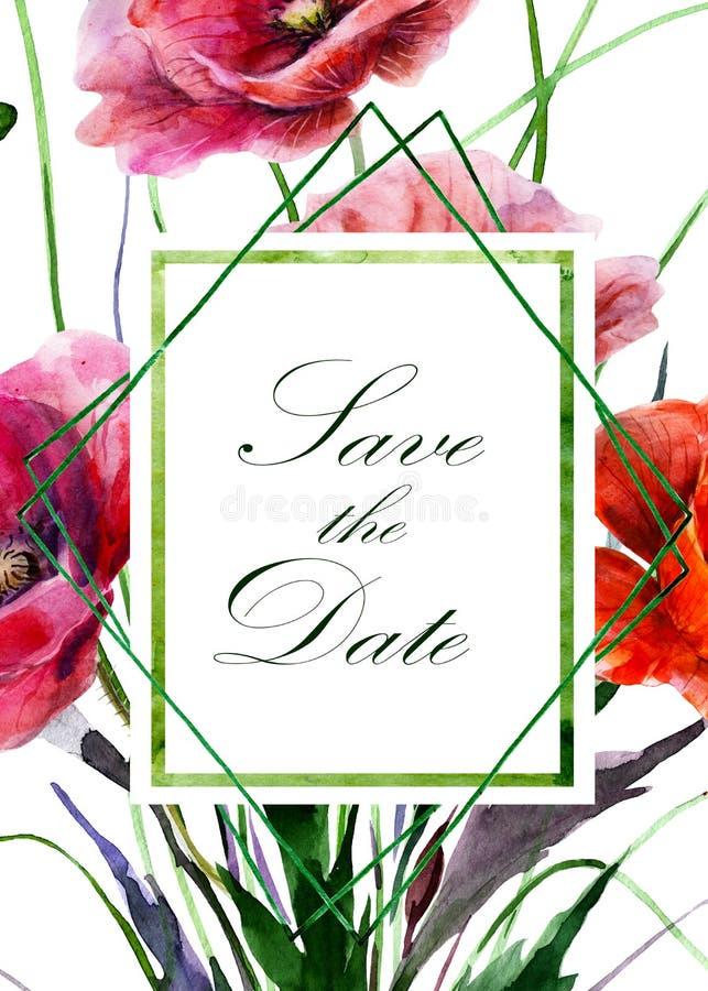 Hintergrund von den Mohnblumenblumen nah oben, Aufkleber mit Text in den vertikalen rechteckigen und rautenförmigen Rahmen Dekora vektor abbildung