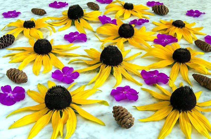 Hintergrund von gelben und purpurroten Blumen lizenzfreie stockfotografie