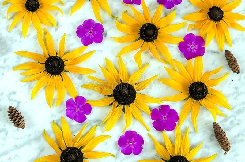 Hintergrund von gelben und purpurroten Blumen stockfoto