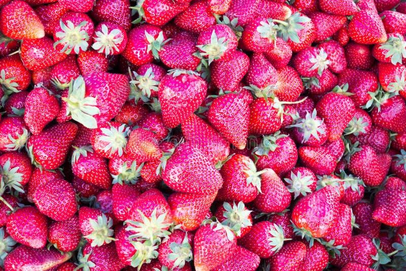 Hintergrund von saftigen Erdbeeren stockfotos