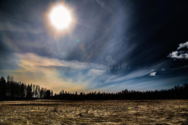 Hintergrundbeleuchtungssonne stockbild