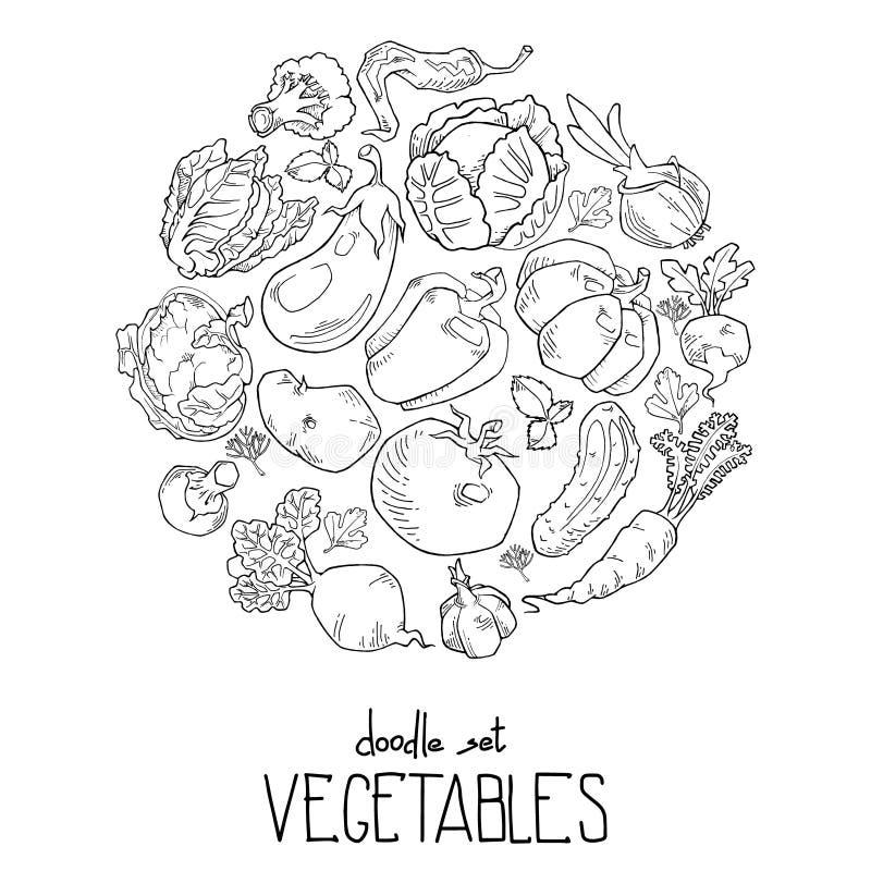Hintergrundkontur, die Gemüse und aus den Fruchtikonen vereinbart in einem Kreis besteht vektor abbildung