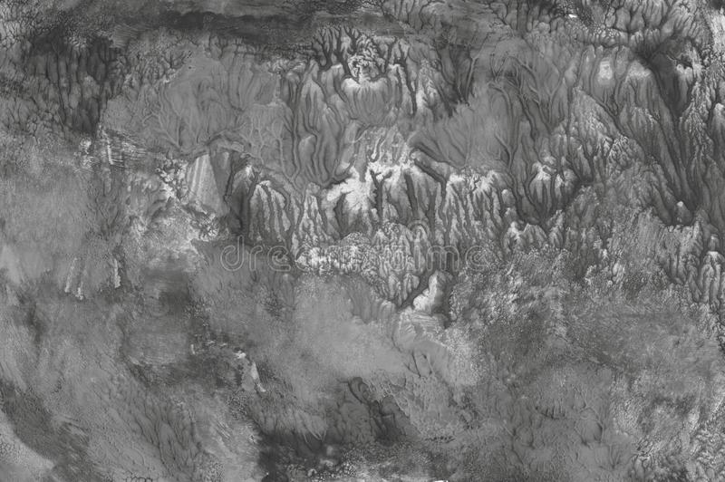Hintergrundpinsel-Grafikkunst-Entwurfskreativitätsschwarzweiss-hobbys der Musterbeschaffenheit scrapbooking Schmutzweinlese Wal d lizenzfreie abbildung