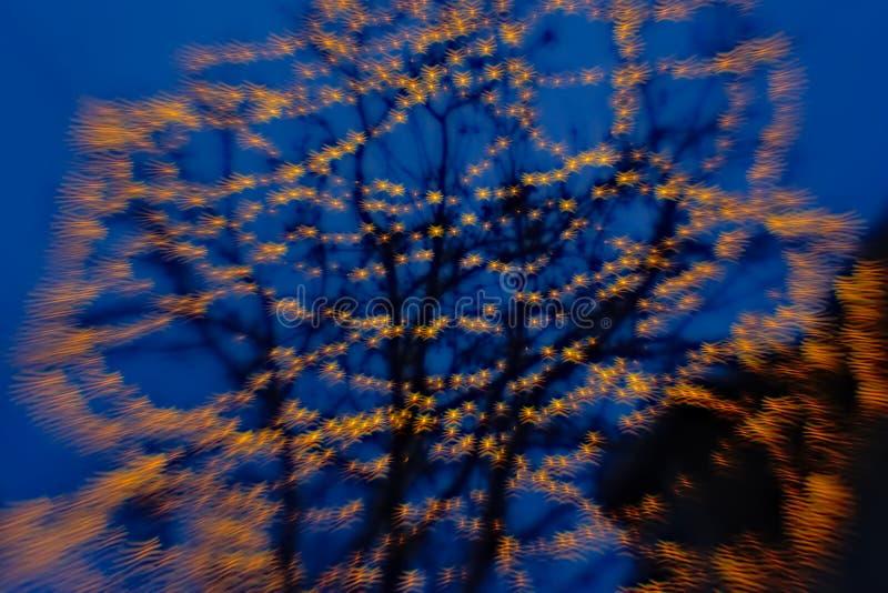 Hintergrundunschärfe des Baums mit bokeh Lichtern in den gewellten Formen lizenzfreies stockfoto