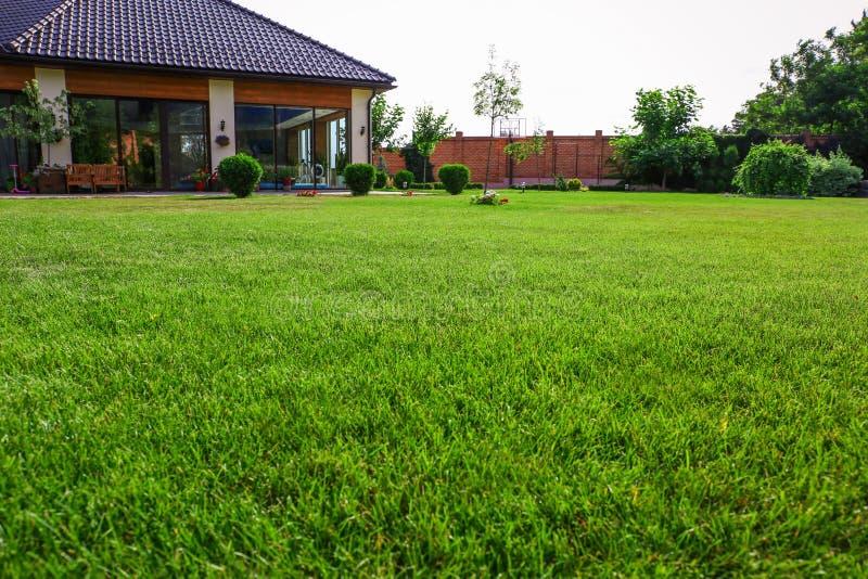 Hinterhof mit üppig grünem Gras an sonnigen Tagen, geschlossen lizenzfreie stockfotos