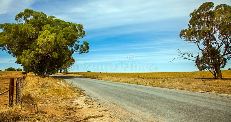 Hinterland bei Narrandera Australien stockfoto
