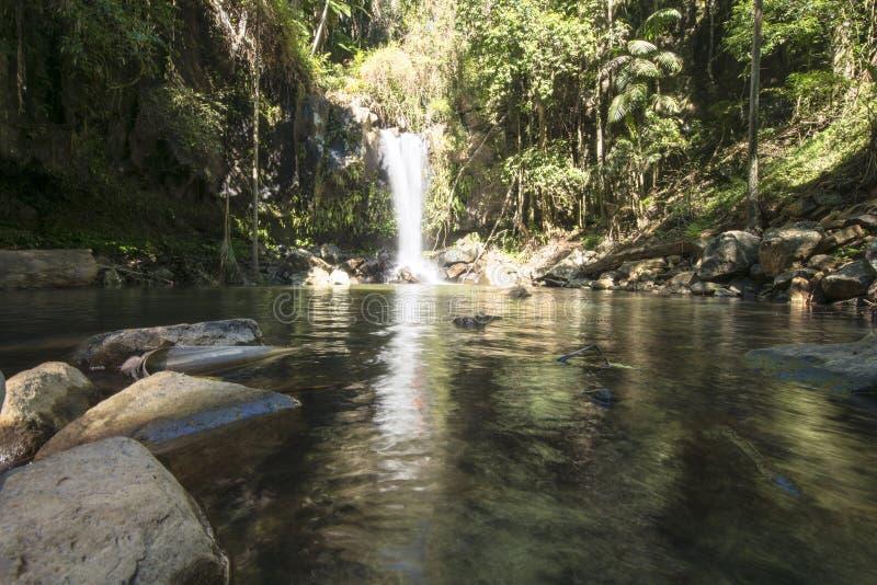 Hinterland de côte de Curtis Falls Mount Tamborine Gold image stock