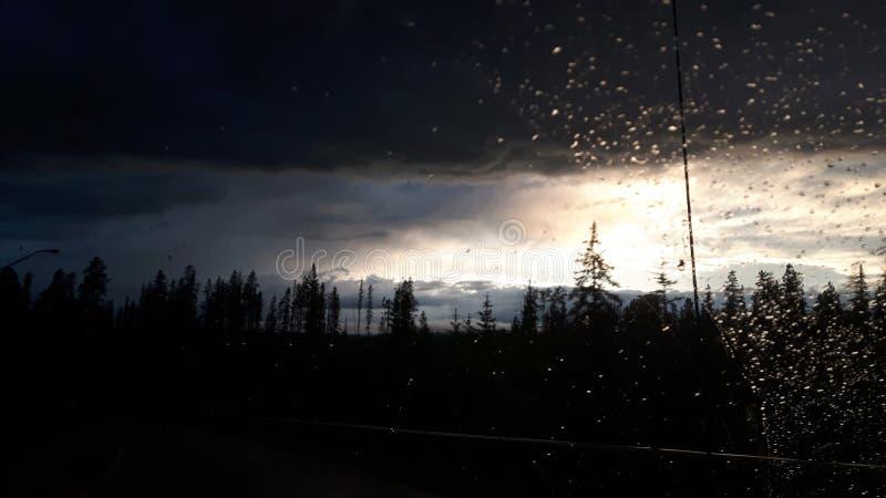 Hinton na regen stock afbeeldingen