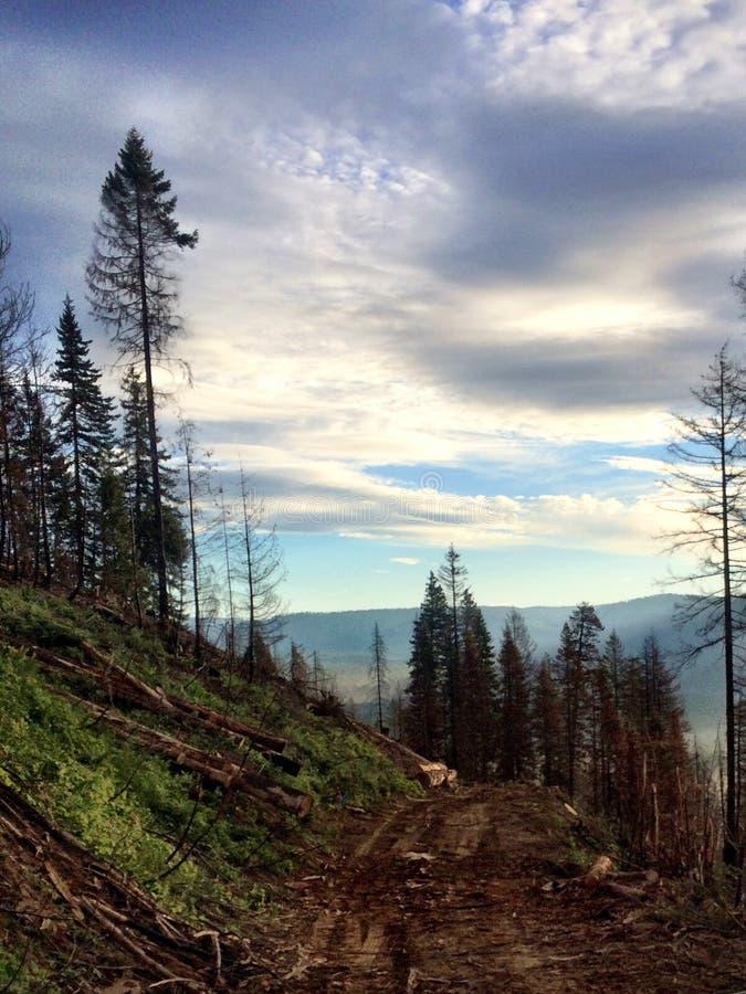 Hinunter den Berg ein Anblick, zum von der Arbeit zu sehen lizenzfreies stockbild
