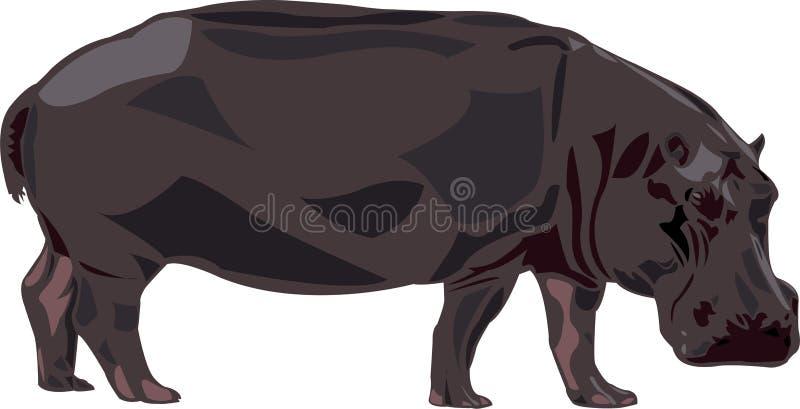Hipopótamo em África ilustração do vetor