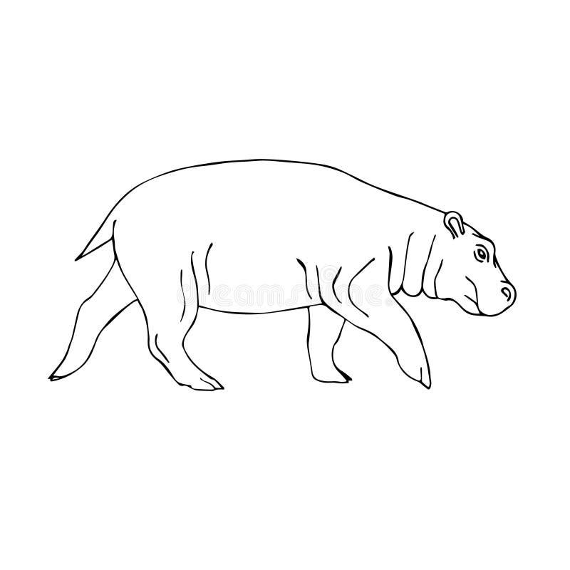 Hipopótamo tirado mão da garatuja do esboço do vetor ilustração stock