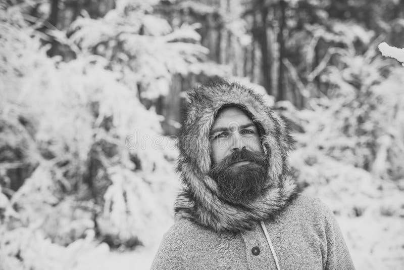 Hippie oder bärtiger Mann in der thermischen Jacke im schneebedeckten Wald stockfotos