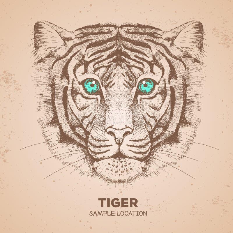 Hippie-Tiertiger Handzeichnung Mündung des Tigers lizenzfreie abbildung
