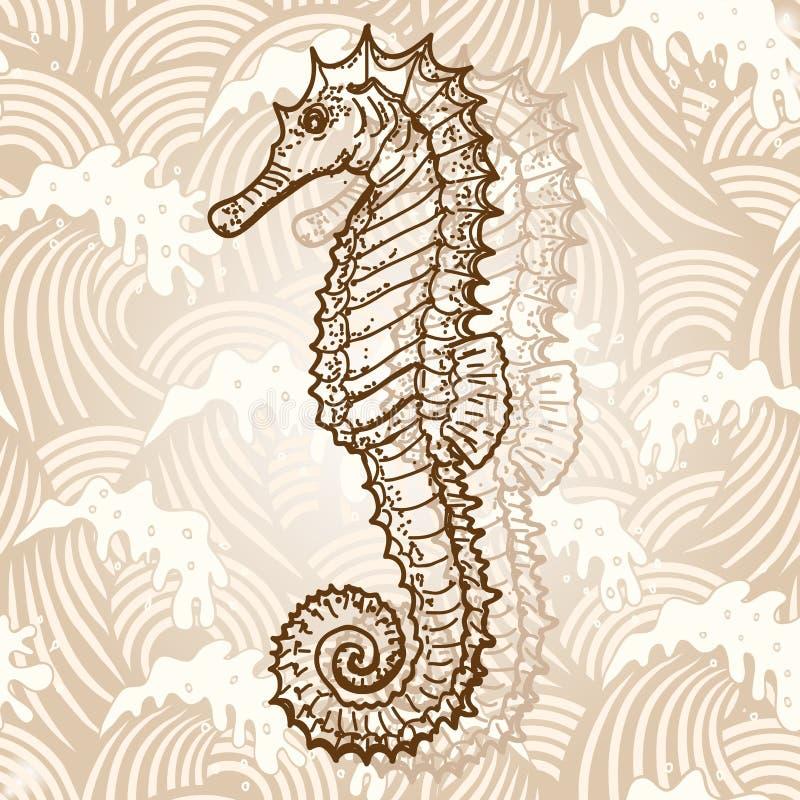 Hippocampe illustration stock