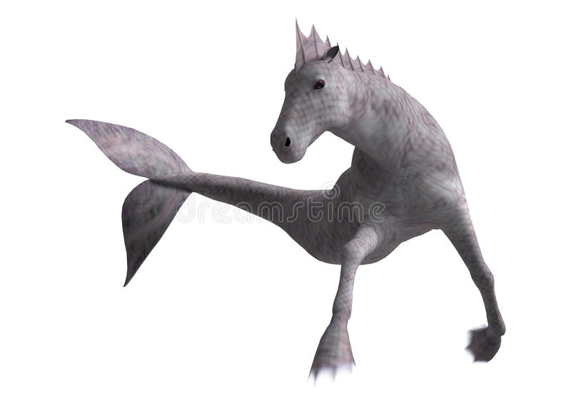 Hippocampus Mermaid's Horse stock illustration