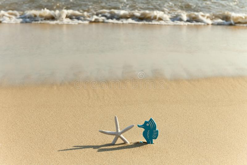 Hippocampus & starfish in front of a beach with wave coming royalty free stock image
