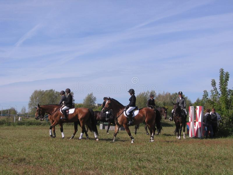 Hippodrom-Wettbewerbspferde Russlands Nowosibirsk am 14. September 2013 Nowosibirsk in springenden und eventing Reitern der Show  lizenzfreie stockfotografie