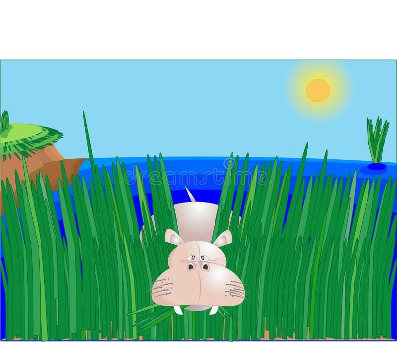 Hippopotamus ilustração do vetor