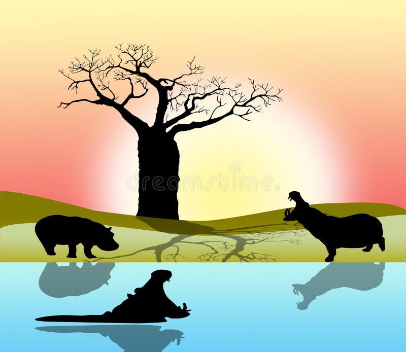 Hippopotamus en Afrique illustration stock